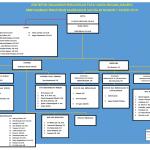 Struktur Organisasi PTUN JKT 2016